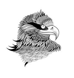 Beautiful a graphical eagles head isolated vector
