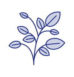 Blue silhouette of plant with branches and leaves vector