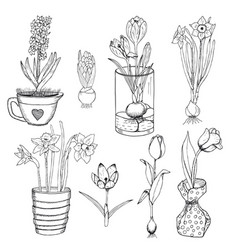 hand drawn spring flowers set vector image