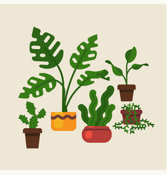 Lovely flat design domestic plants featuring vector