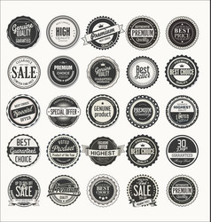 Retro labels and badges collection vector