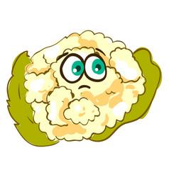 Sad cauliflower on white background vector