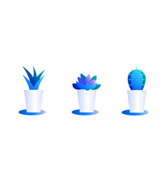 set cacti in pots bright color combinations vector image