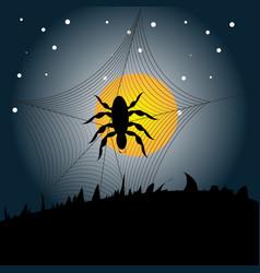 Halloween spider background vector image