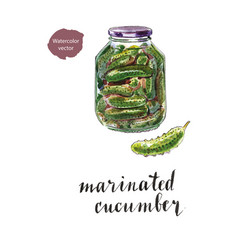 glass jar of marinated cucumbers vector image vector image