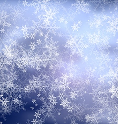 Christmas blue frost background vector image