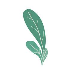 fantasy plant in trendy vector image