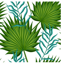 leaves palm trees vector image