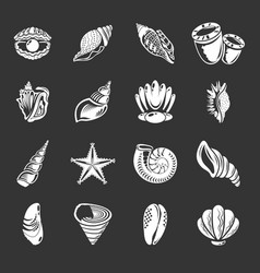 tropical sea shell icons set grey vector image