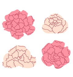 Peony pastel flowers collection isolated on white vector image vector image