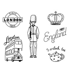 british logo crown and queen teapot with tea vector image vector image