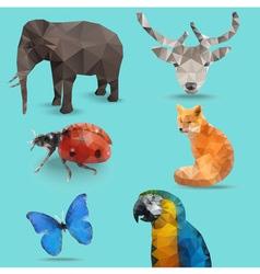 Animal bug polygon vector