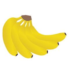 banana2 vector image