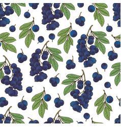 Berries collection-05 vector