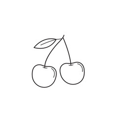 Cherry line icon healthy fruit graphics vector