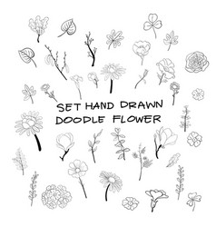 hand drawn flower doodle style vector image