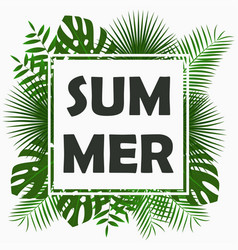 Summer card design with - tropical palm leaves vector