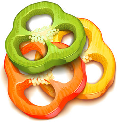 pepper slice isolated vector image vector image