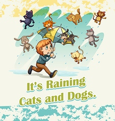 Idiom raining cats and dogs vector