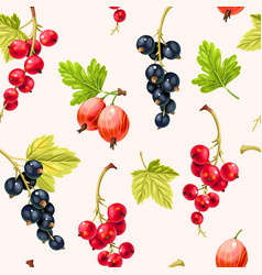 Seamless pattern goose berries and currant berries vector