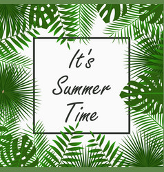 summer time card design with tropical palm leaves vector image