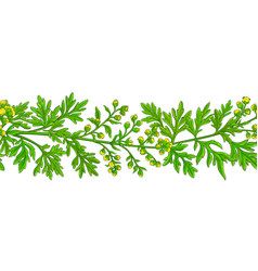 wormwood plant pattern on white background vector image