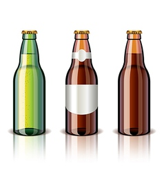object beer bottles vector image