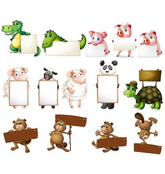 Animals and signs vector image