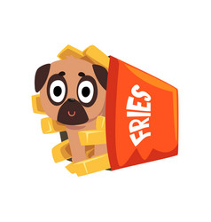 cute pug dog sitting in a paper box of french vector image vector image