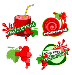 icon red currant vector image vector image