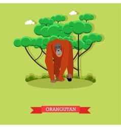 Wild orangutan in flat style vector image vector image