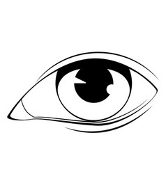 human eye in black and white vector image