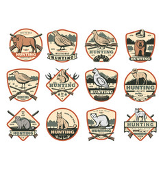 Hunting club wild animals and ammo icons vector