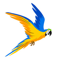 Macaw parrot tropical exotic bird vector