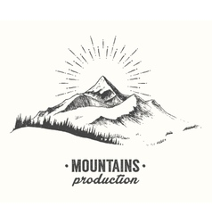 Mountains fir forest sunrise sunset drawn vector
