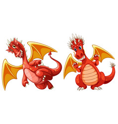 red dragon with wings vector image