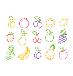 Set icons fruits and berries in flat style vector