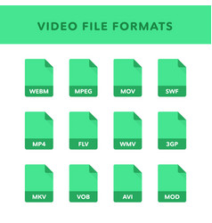 Set of video file formats and labels in flat vector