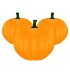 Tree pumpkins vector image