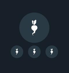 radish icon gardening vector image
