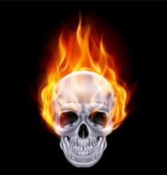 Chrome metal fair skull 01 vector image vector image