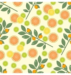 citrus pattern Fruit background Summer bright vector image