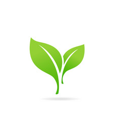 element for eco and bio logo green leaf icon vector image