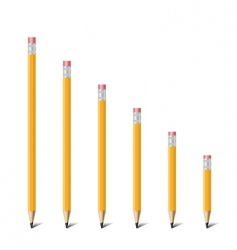 ladder of pencil vector image