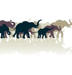 Elephant herd vector image vector image