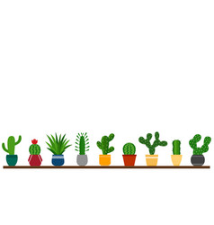 background with cactuses in pots vector image