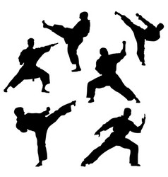black silhouette of karate on a white background vector image