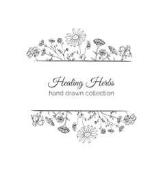 Holistic Medicine Card Healing Herbs vector