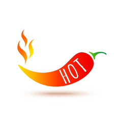 icon red chilli pepper in fire vector image