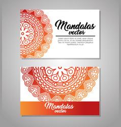 Mandala vintage template vector